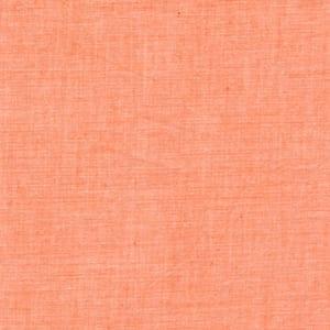 SC79 Apricot