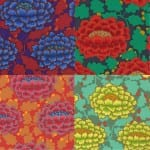 GP126 Frilly, Kaffe Fassett