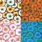 PJ52 Picotte Poppies, Philip Jacobs, Kaffe Fassett Collective