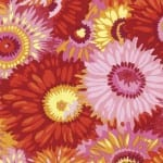 PJ79 Zany, PHILIP JACOBS, Kaffe Fassett Collective