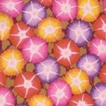 PJ85 GLORY, Brandon Mably, Kaffe Fassett Collective