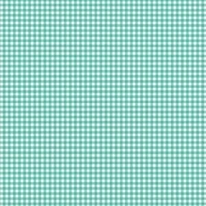 920/T6 Gingham Turquoise - Fruity Friends