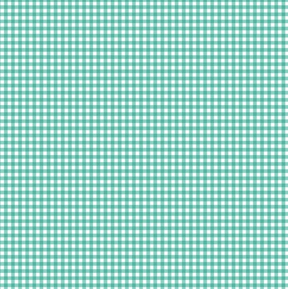 920 T6 Gingham Turquoise