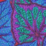 PJ18 Begonia Leaves, Philip Jacobs, Kaffe Fassett Collective