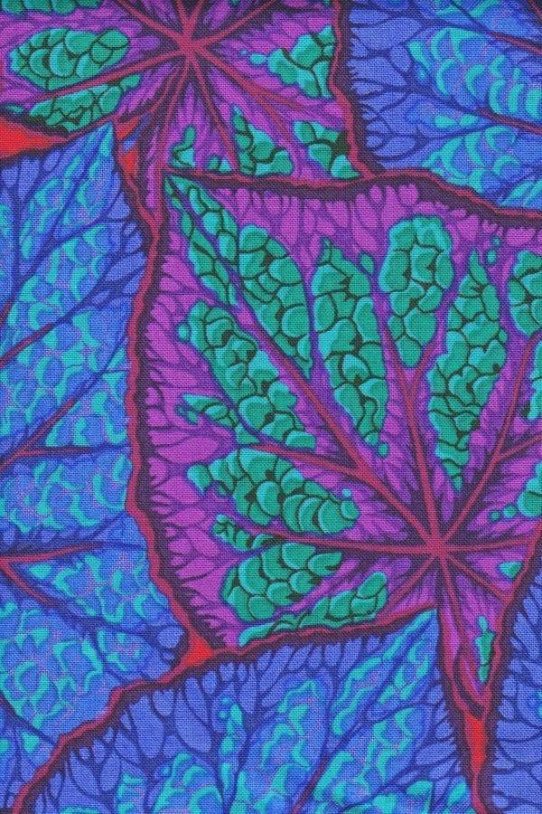 PWPJ018 Begonia Leaves