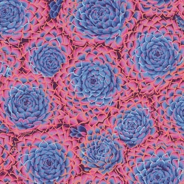 PWPJ091.Blue Succulent Philip Jacobs