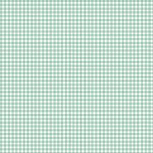 920_T62 Gingham