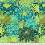 japanese chrysanthemum pwpj041.fores