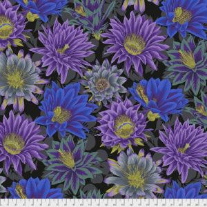 PJ96 Cactus Flower - Phillip Jacobs - Kaffe Fassett Collective