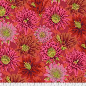 Cactus Flower PWPJ096.red