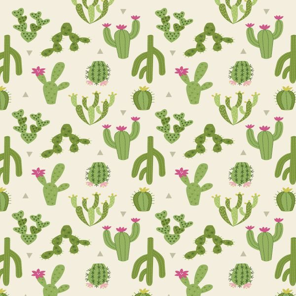 Jersey Knits Cactus Jersey Knits Cactus J001-01