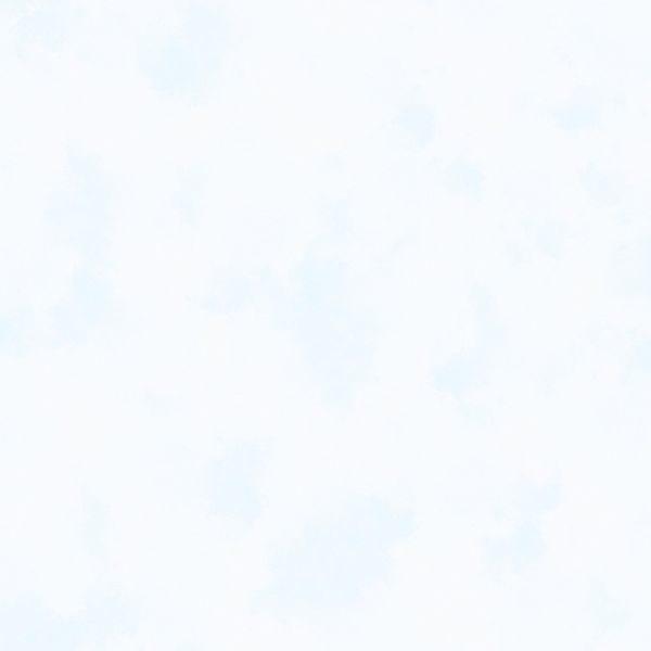 Grey Tonal Clouds Y2875-116
