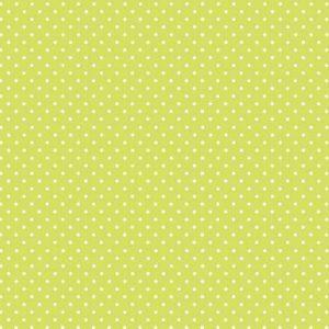 830_G5_Spot Kiwi