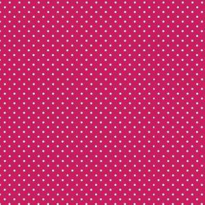 830_P68_Spot Raspberry