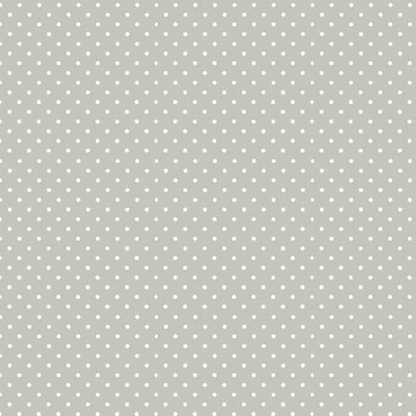 830_S60_Spot Silver