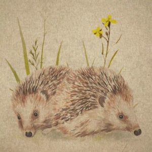 Digital Panel Hedgehogs