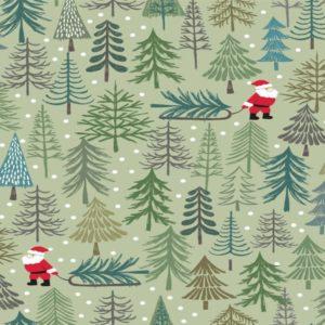 Christmas Trees C53.2