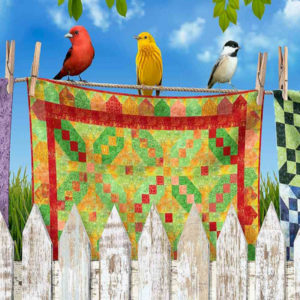Birds on Quilts CD7702-Multi