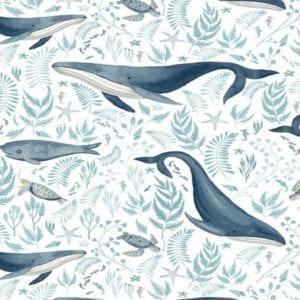 Dear Stella Whale of a Time