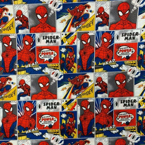 Spiderman Comic Strip 13080021