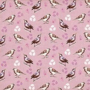 2655-09 Garden Birds Debbie Shore