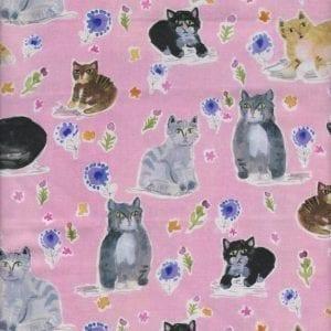 1211 Cats Dear Stella