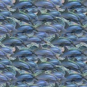 Call of the Sea 17992.Multi