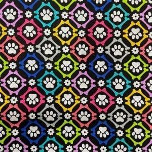 dog-loves-bones-2624-05