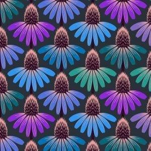Love Always PWAH149.amethyst Echinacea