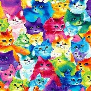 Painted Bright Cats C7485-Cat Multi