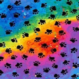 Rainbow Paws C7486-Cat Rainbow