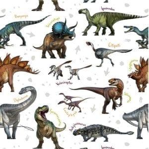 Dinosaur Species 2713-01