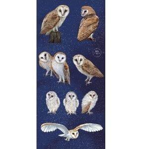 Barn Owl Panel