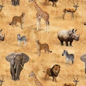 African Safari 78830.105