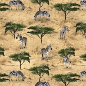 African Safari 78830.109