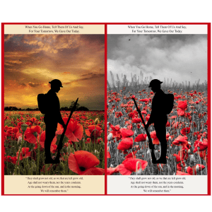 Poppies A558 Remembrance Panel